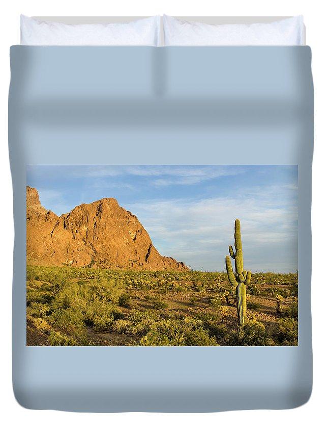 Geology Duvet Cover featuring the photograph Desert Mountain Cactus Classic by Photo By Chris Lemmen Www.chrislemmenphotography.ca