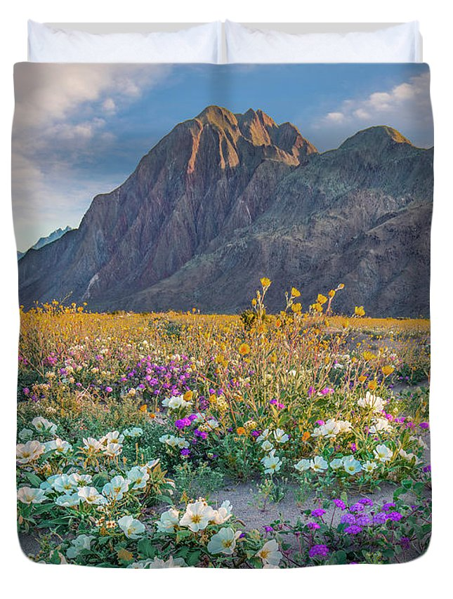 00568193 Duvet Cover featuring the photograph Desert Sand Verbena, Desert Sunflower by