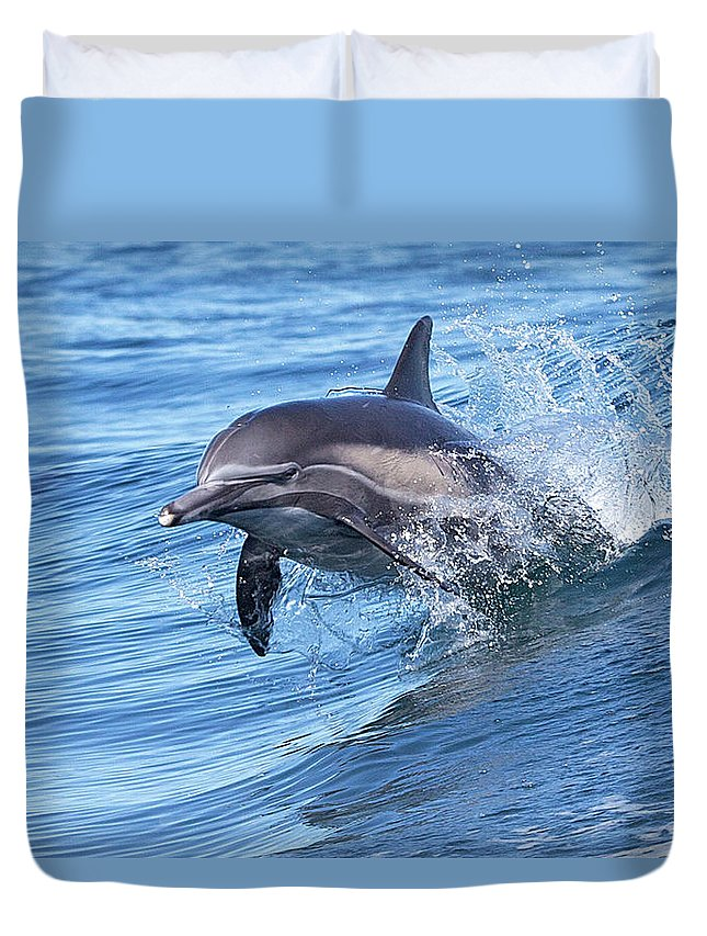 Wake Duvet Cover featuring the photograph Dolphin Riding Wake by Greg Boreham (treklightly)