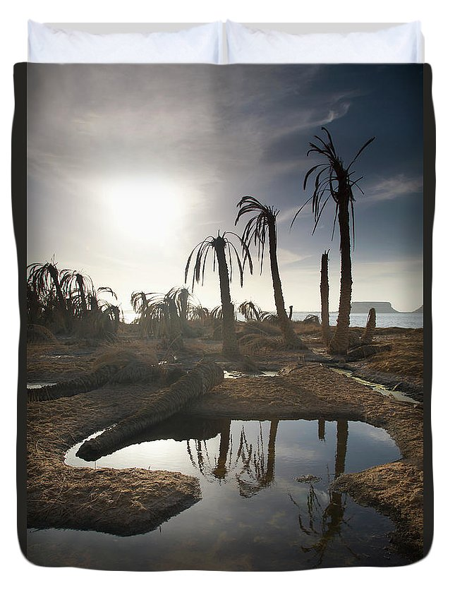 Scenics Duvet Cover featuring the photograph Dried Up Palm Trees And Salt Water On by Sean White / Design Pics