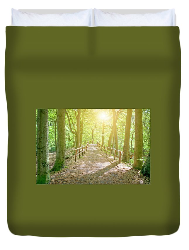 Scenics Duvet Cover featuring the photograph Dutch Forest With Fenced Footpath And by Cirano83