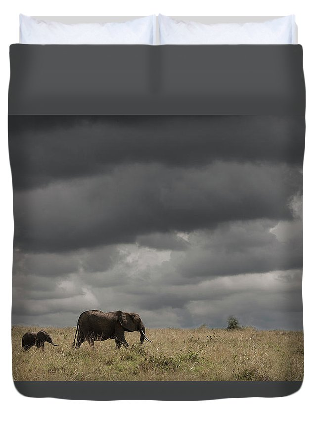 Kenya Duvet Cover featuring the photograph Elephant Under Cloudy Sky by Buena Vista Images