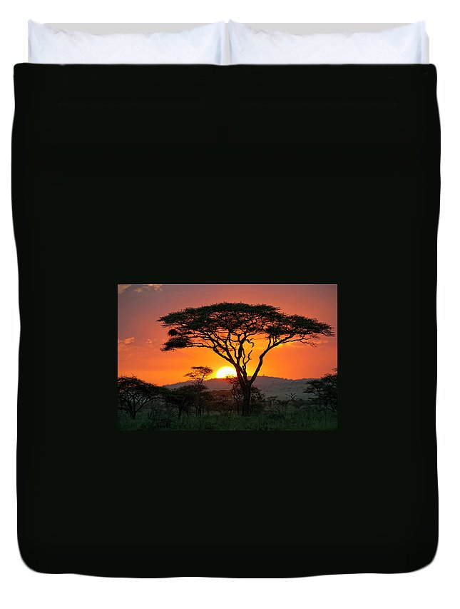 Scenics Duvet Cover featuring the photograph End Of A Safari-day In The Serengeti by Guenterguni
