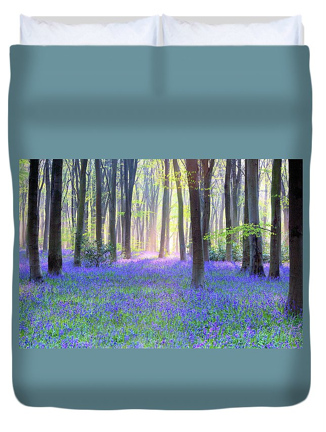Scenics Duvet Cover featuring the photograph English Bluebell Wood At Dawn by Doug Chinnery