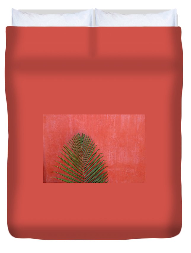Recreational Pursuit Duvet Cover featuring the photograph Exotic Background by Lucgillet