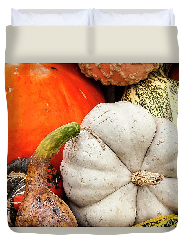 Season Duvet Cover featuring the photograph Fall Season Squash And Pumpkins by M Timothy O'keefe