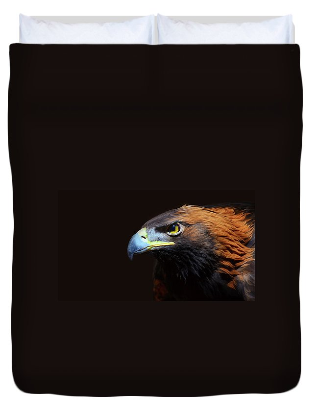 Animal Themes Duvet Cover featuring the photograph Female Golden Eagle by A L Christensen