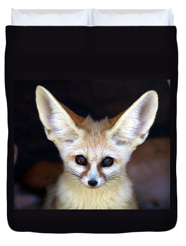Alertness Duvet Cover featuring the photograph Fennec Fox by Floridapfe From S.korea Kim In Cherl