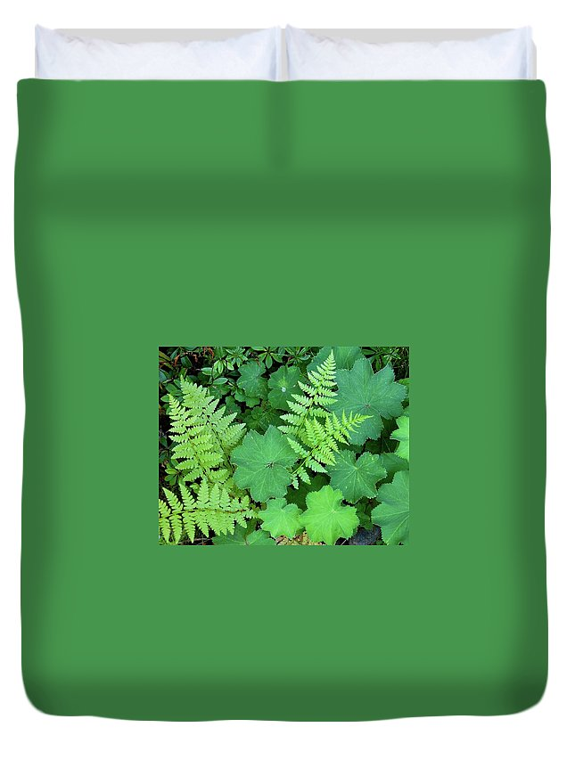 Outdoors Duvet Cover featuring the photograph Ferns And Ladys Mantle by Pamela Long