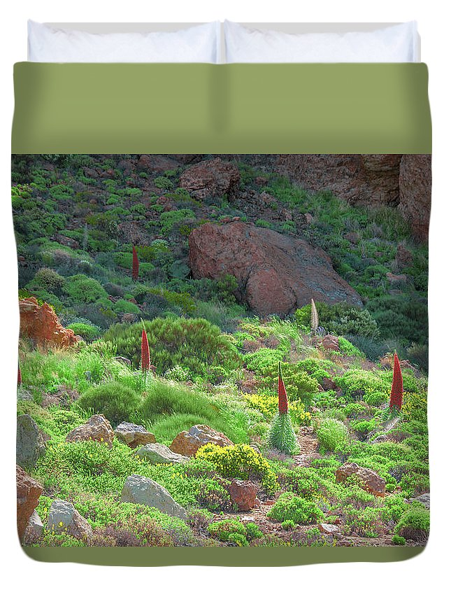 Echium Duvet Cover featuring the photograph Field Of Echium Wildpretii In The Teide National Park by Sun Travels