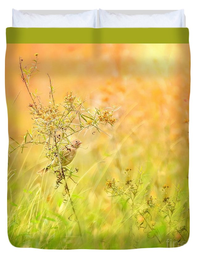 Aves Duvet Cover featuring the photograph Field Sparrow by Heather Hubbard
