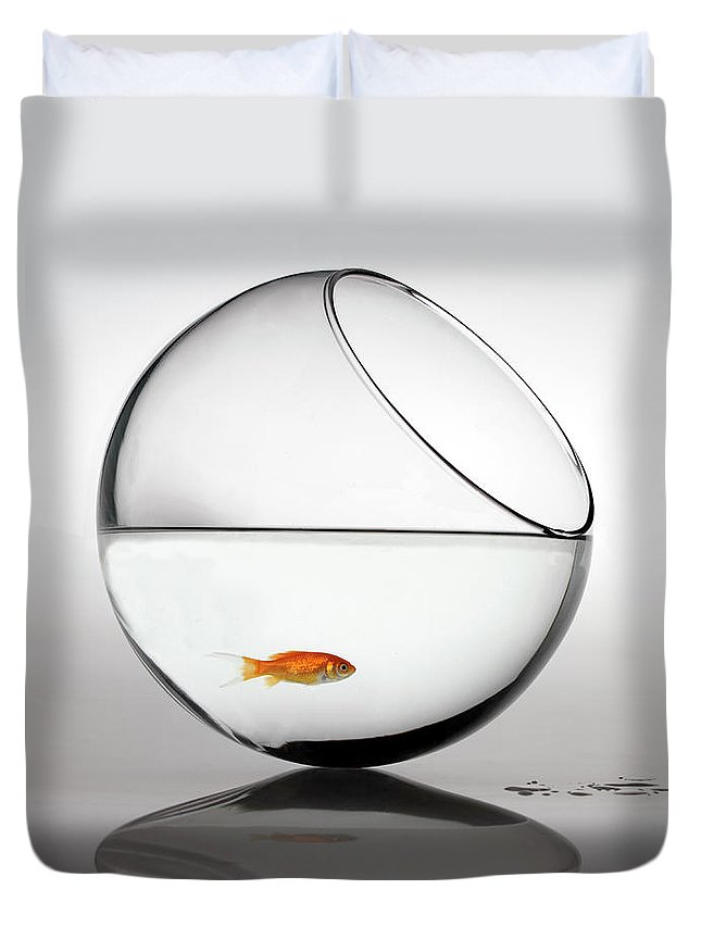 White Background Duvet Cover featuring the photograph Fish In Fish Bowl Stressed In Danger by Paul Strowger