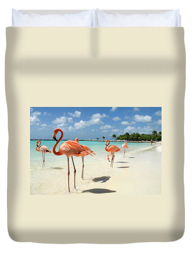 Shadow Duvet Cover featuring the photograph Flamingos On The Beach by Vanwyckexpress