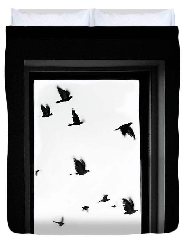 Spooky Duvet Cover featuring the photograph Flock Of Crows Seen Through A Window by Grant Faint