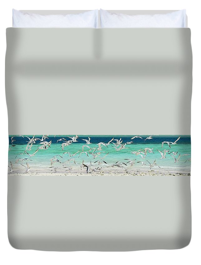 Scenics Duvet Cover featuring the photograph Flock Of Seagulls By Azure Beach by Christopher Leggett
