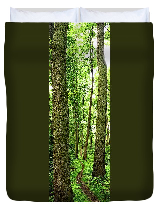 Scenics Duvet Cover featuring the photograph Footpath Between The Trees by Tomchat