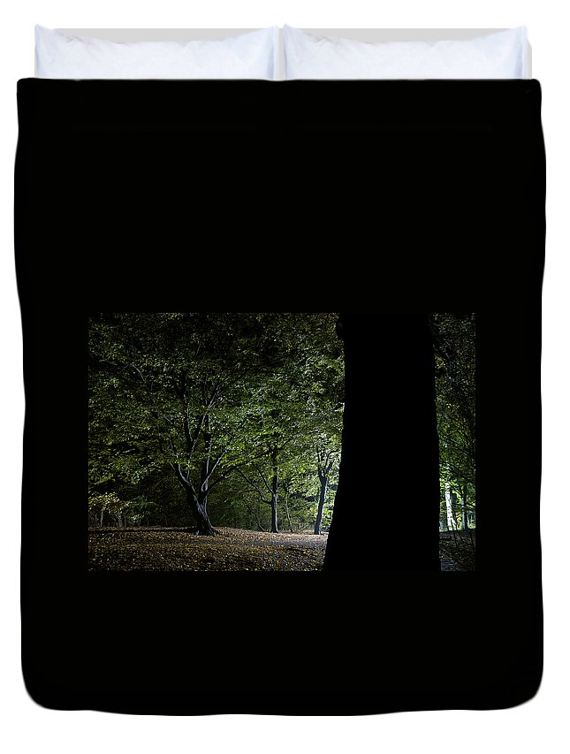 Gothic Style Duvet Cover featuring the photograph Forest Glow Trees Lit At Night by Peskymonkey