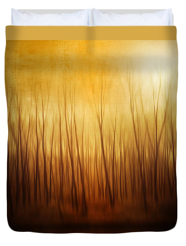 Dawn Duvet Cover featuring the photograph Forest by Philippe Sainte-laudy Photography