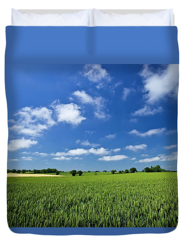 Environmental Conservation Duvet Cover featuring the photograph Fresh Air. Blue Skies Over Green Wheat by Alvinburrows