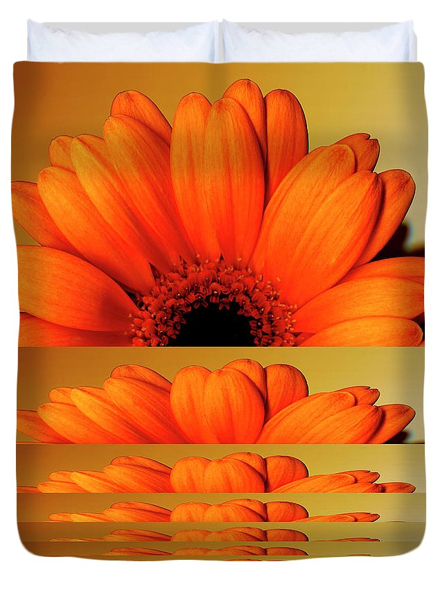 Orange Color Duvet Cover featuring the digital art Gerbera Flower As Rising Sun by Eversofine