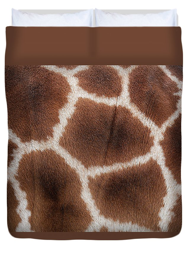 Animal Skin Duvet Cover featuring the photograph Giraffes Skin Texture by Andrew Dernie