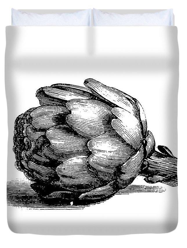 Italian Food Duvet Cover featuring the digital art Globe Artichoke | Antique Culinary by Nicoolay
