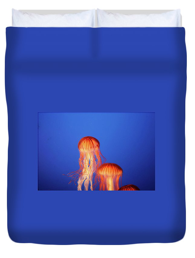 Underwater Duvet Cover featuring the photograph Glowing Jellyfish Under Water by Indy Randhawa