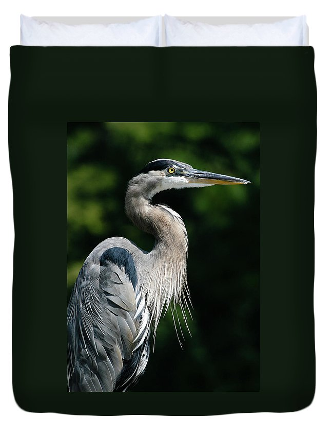 North Carolina Duvet Cover featuring the photograph Great Blue Heron by Bill Swindaman