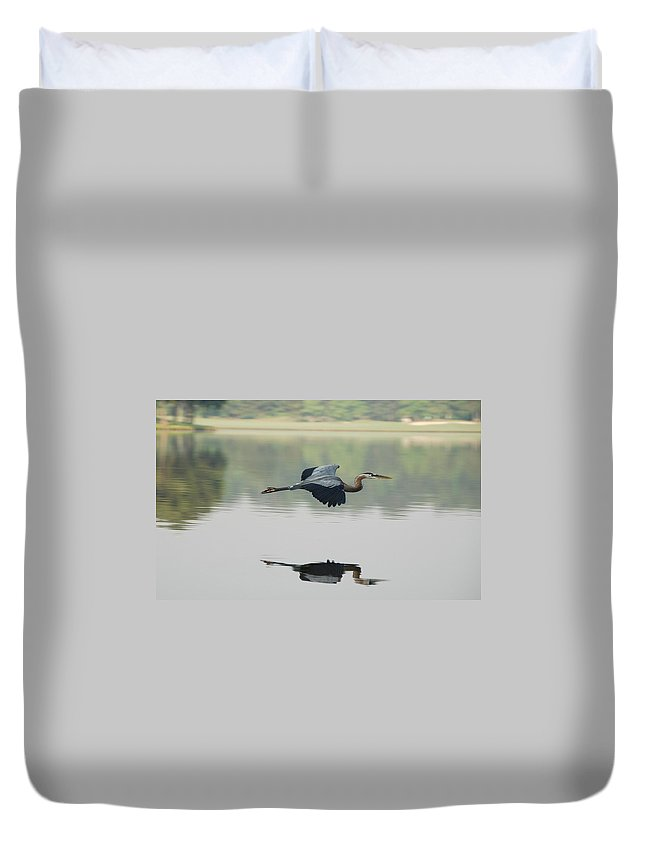Animal Themes Duvet Cover featuring the photograph Great Blue Heron In Flight by Photo By Hannu & Hannele, Kingwood, Tx