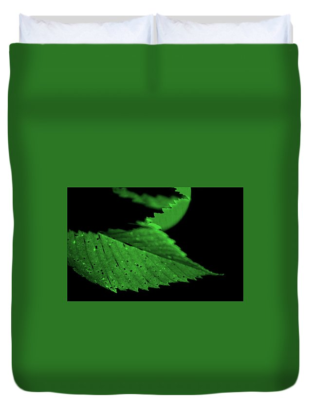 Leaf Duvet Cover featuring the photograph Green Leaf in Sun by Lonnie Paulson