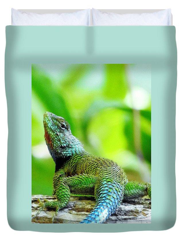 Atitlan Duvet Cover featuring the photograph Green Lizard With An Attitude by Matias Feucht