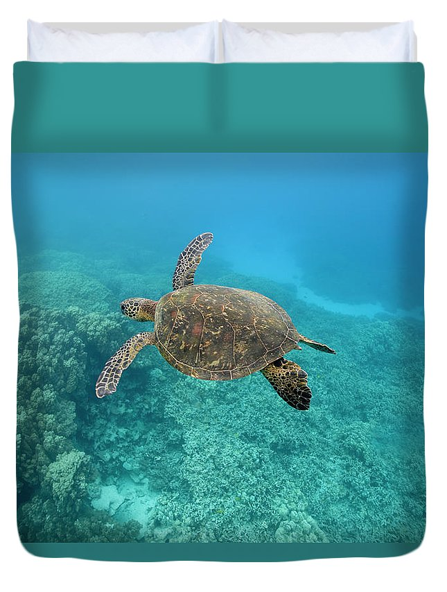 Underwater Duvet Cover featuring the photograph Green Sea Turtle, Big Island, Hawaii by Paul Souders