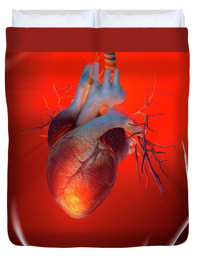 Event Duvet Cover featuring the digital art Heart Attack, Conceptual Artwork by Science Photo Library - Roger Harris