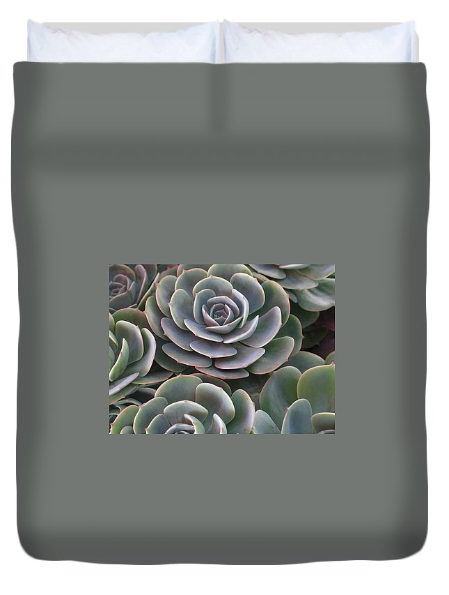 Scenics Duvet Cover featuring the photograph Hens And Chicks Plant Full Frame by Sassy1902