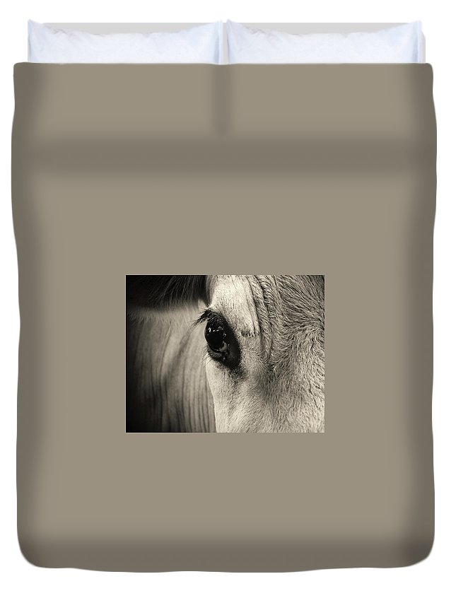 Horse Duvet Cover featuring the photograph Horse Eye by Karena Goldfinch