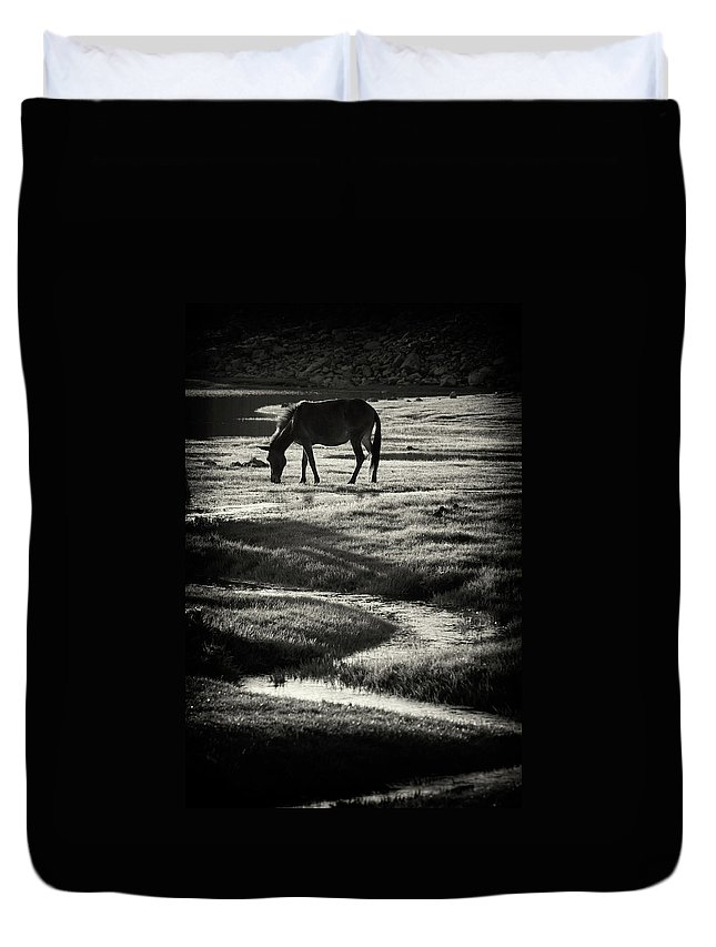 Horse Duvet Cover featuring the photograph Horse by Muratseyit