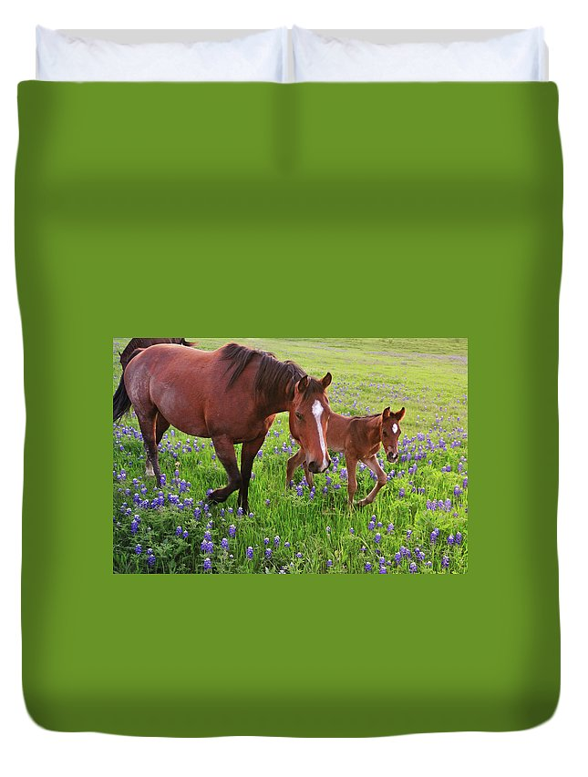 Horse Duvet Cover featuring the photograph Horse On Bluebonnet Trail by David Hensley