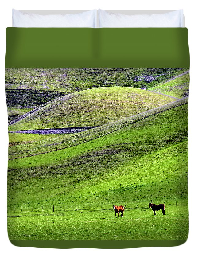Horse Duvet Cover featuring the photograph Horses In Hill Country by Mitch Diamond