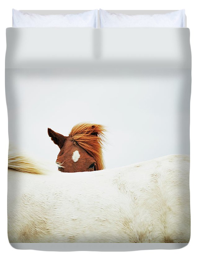 Animal Themes Duvet Cover featuring the photograph Horses by Markus Renner