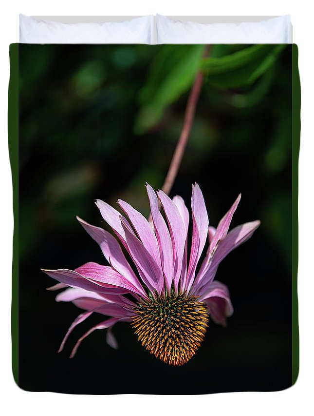 Cole's Flowers Duvet Cover featuring the photograph I Will Remember Summer by Marilyn Cornwell
