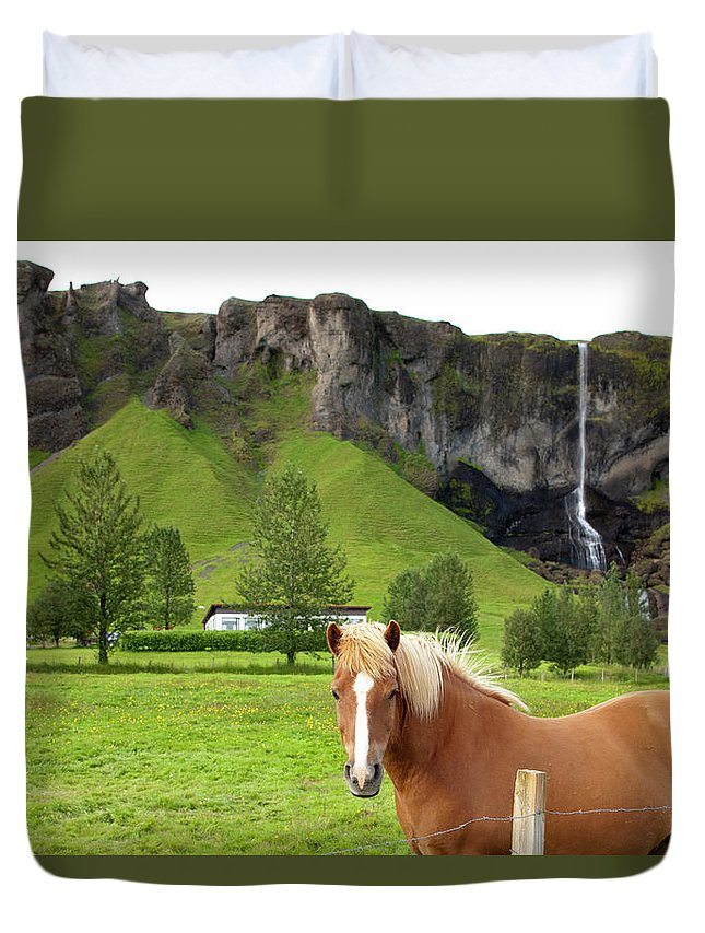 Scenics Duvet Cover featuring the photograph Icelandic Horse And Waterfall, Vik by Paul Souders