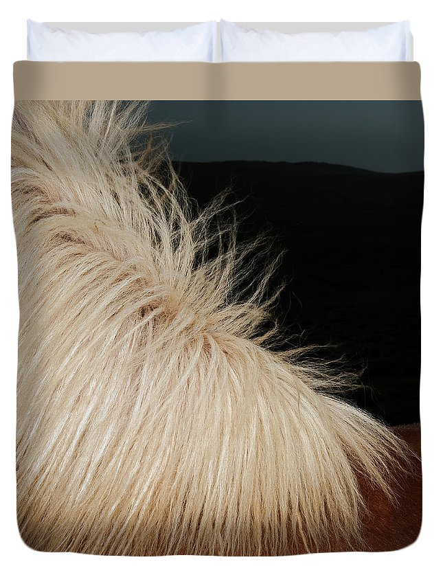 Horse Duvet Cover featuring the photograph Icelandic Horse by Roine Magnusson