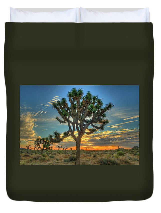 Scenics Duvet Cover featuring the photograph Joshua Tree At Sunrise by Photograph By Kyle Hammons