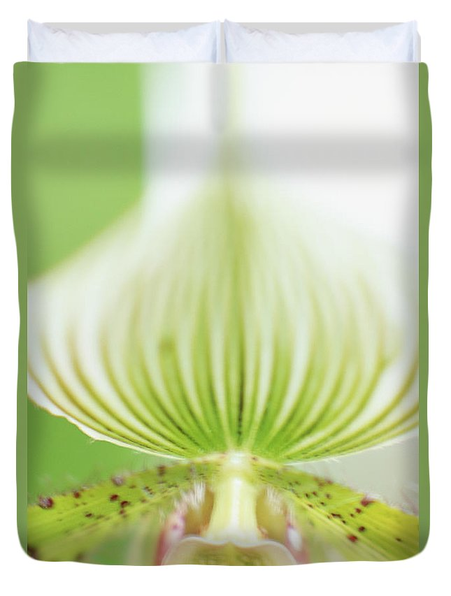 Single Flower Duvet Cover featuring the photograph Ladys Slipper Paphiopedilum Sukhakulii by Vera Storman