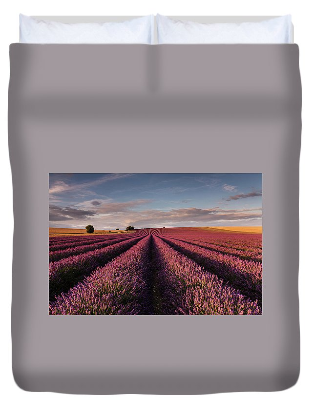 Scenics Duvet Cover featuring the photograph Lavender Field by Paul Baggaley