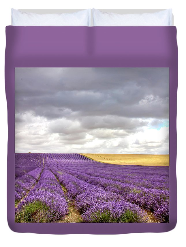 Tranquility Duvet Cover featuring the photograph Lavender Field by Photo By Roger Cave