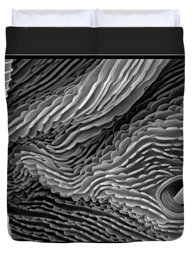 Microscope Duvet Cover featuring the photograph Lavender Leaf, Springtail, Sem by Sheri Neva