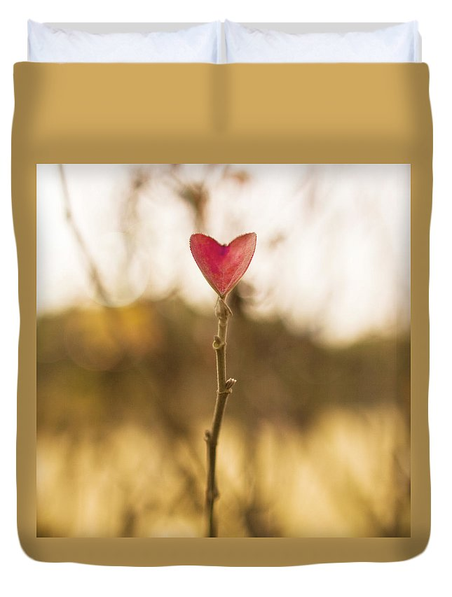 Outdoors Duvet Cover featuring the photograph Leaf In Heart Shape by Twomeows
