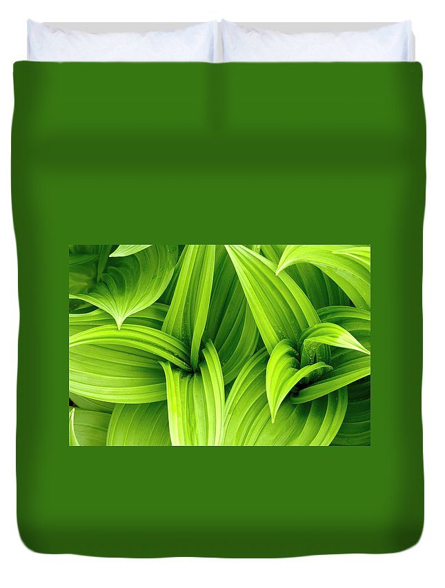 Grass Duvet Cover featuring the photograph Leaves Drops Green by Vladimirovic