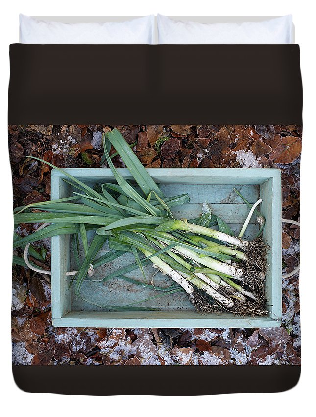 Outdoors Duvet Cover featuring the photograph Leeks In Wooden Box On A Frosty Winter by Dougal Waters